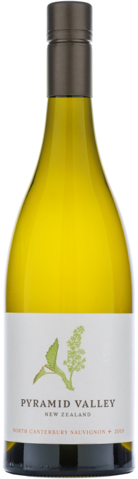 North Canterbury Sauvignon Blanc